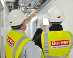 HARVEY GROUP PLC RENEW INVESTOR IN PEOPLE ACCREDITATION